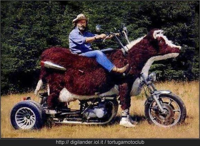 変わったバイク17