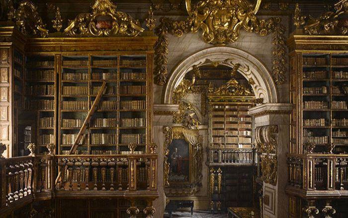 美しい図書館 11
