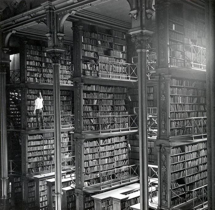 美しい図書館 12