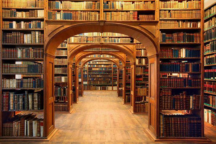 美しい図書館 14