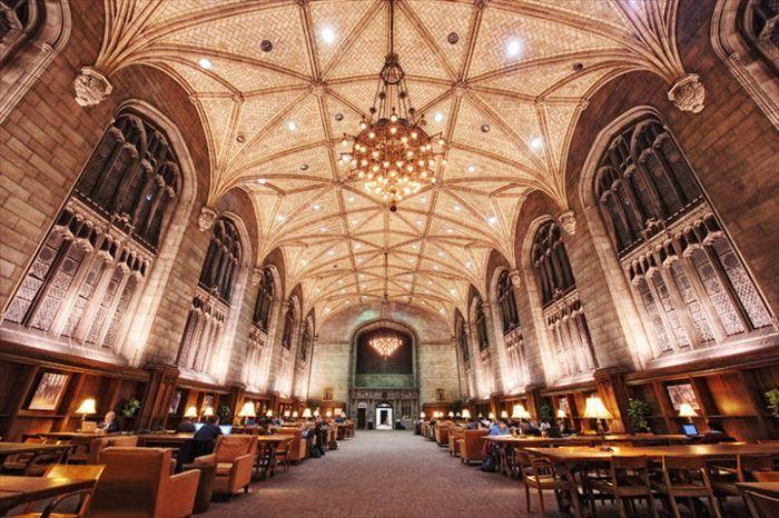美しい図書館 24