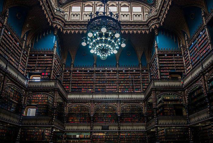 美しい図書館 3.5
