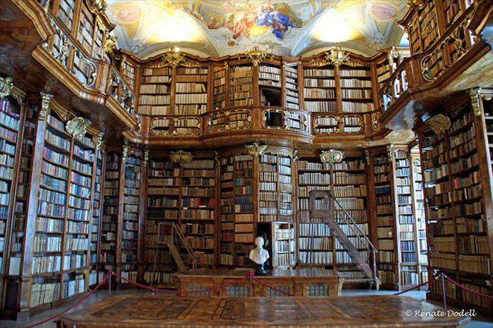 美しい図書館 5.