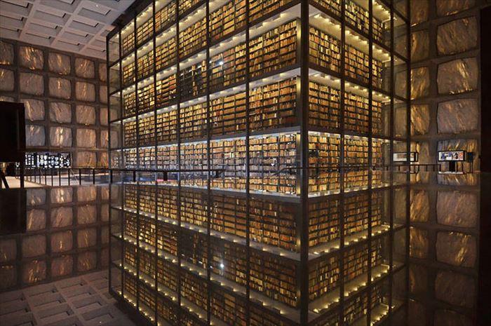 美しい図書館 9
