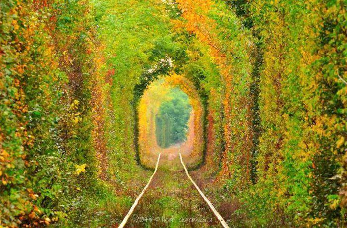 美しい道 4