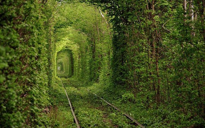 美しいトンネル 1