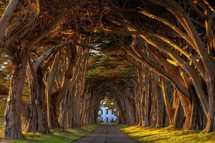 美しいトンネル 13