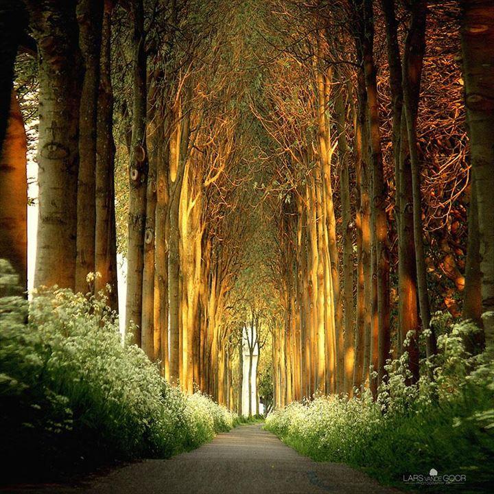 美しいトンネル 21