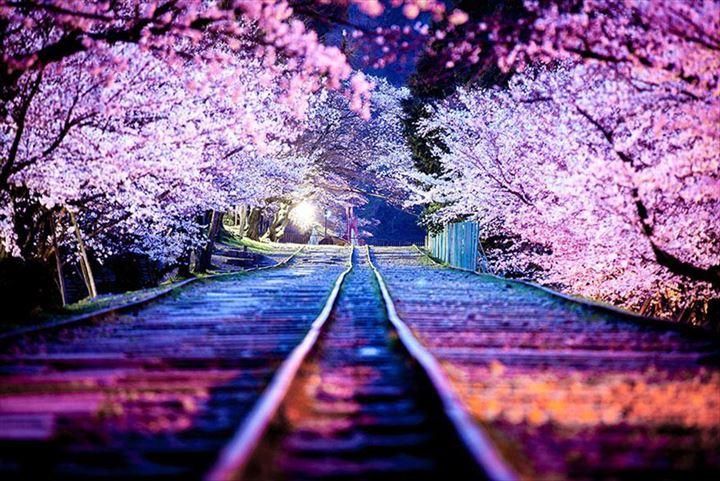 美しいトンネル 29