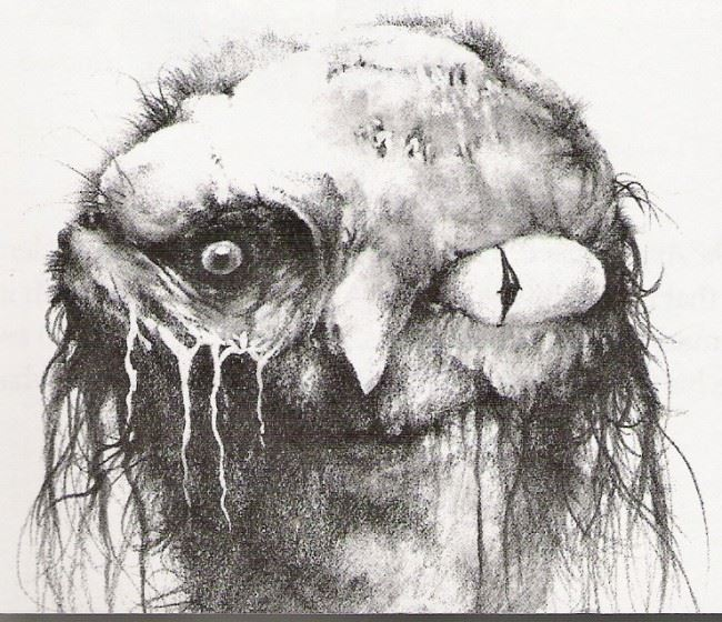 怖い絵 33