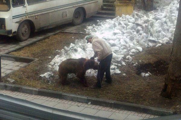 ロシア面白画像 63