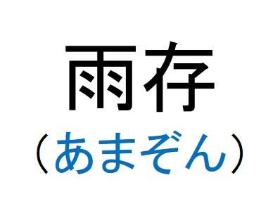 41_雨存(あまぞん)