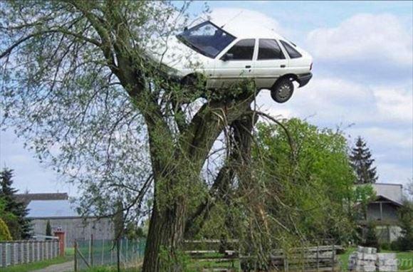 危険運転・駐車 30
