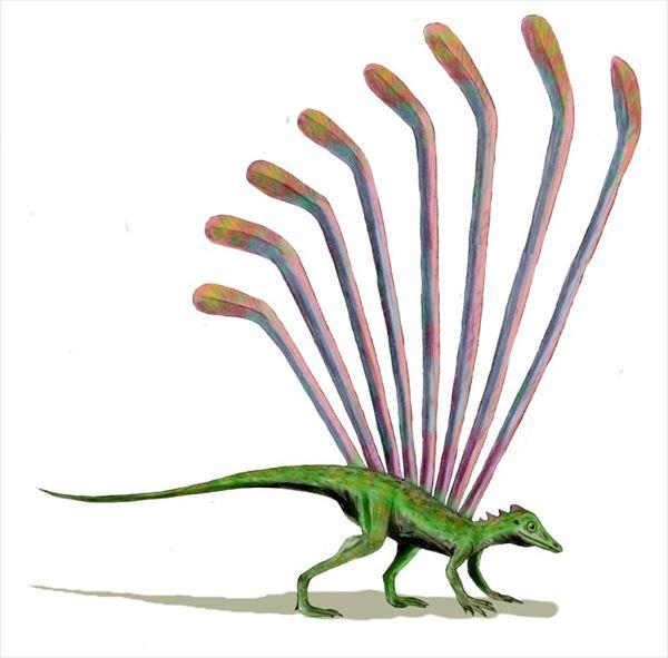古代生物画像 14.0