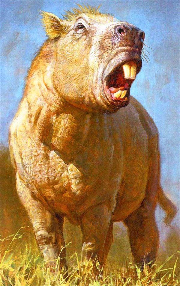 古代生物画像 21.0