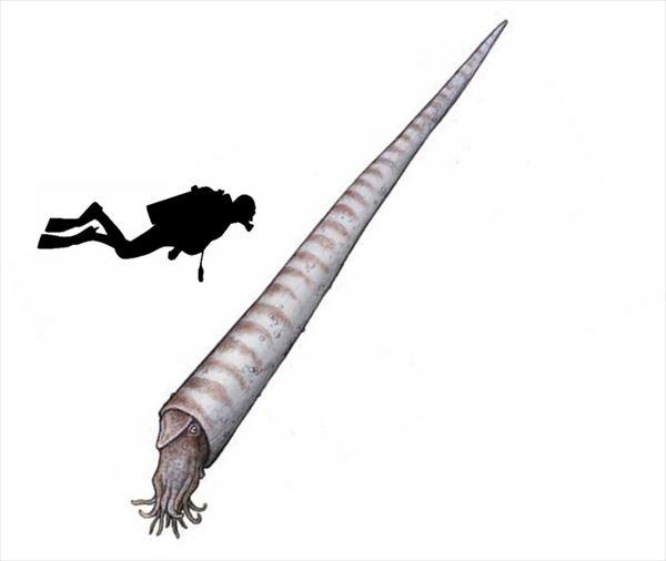 古代生物画像 3.1