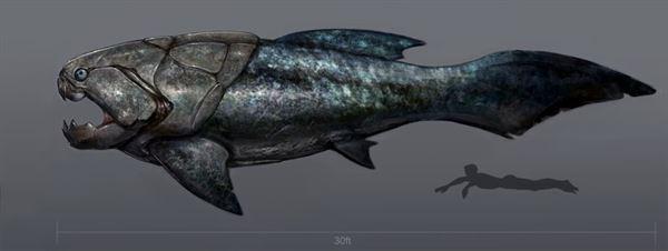 古代生物画像 4.1