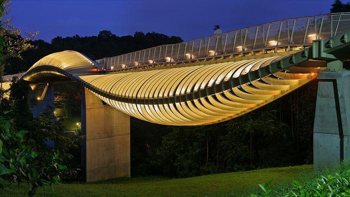 美しい橋 11.0