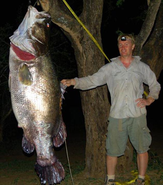 巨大魚 14.0