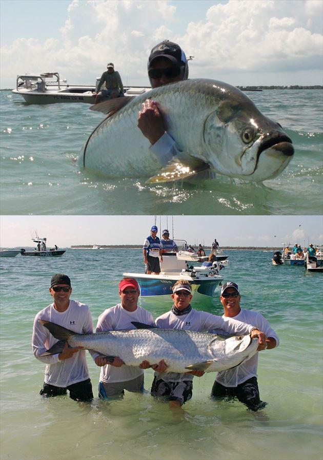巨大魚 19.0