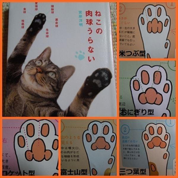 猫の肉球1 102