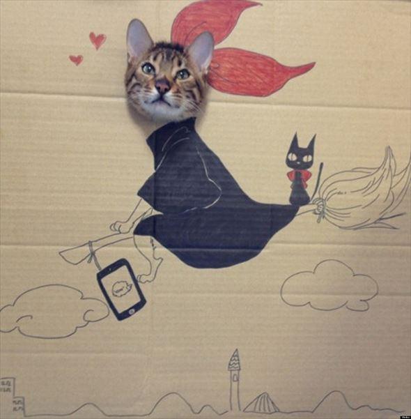 ダンボール猫 12