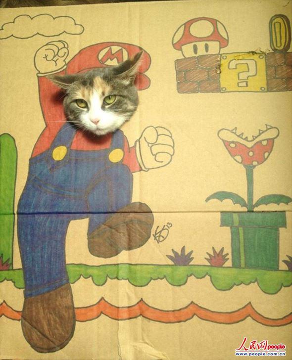 ダンボール猫 13