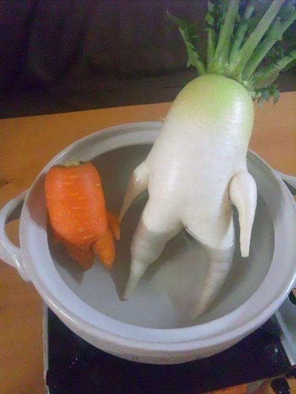 奇形野菜 6