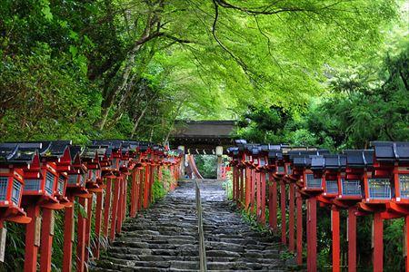 日本の好きな所・嫌いな所 1
