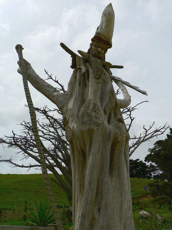 珍しい木 13