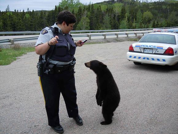 警察官画像 39